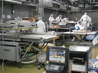 Factory (Line operation)